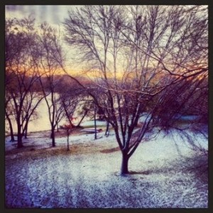 Bare trees, snow, and a lakeshore