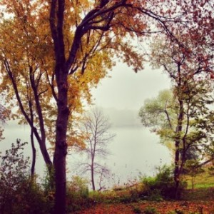Mist and trees on the shore of Lake Schmidt at Salem Green Apartments