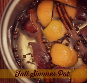Fall-simmer-pot-recipe-cinnamon-cloves-[1]